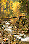 Big Creek Footbridge in Autumn, Idaho