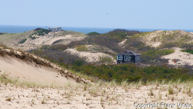 "Zara and ""Boris Dune shacks, Provine Lands, Cape Cod National Seashore."