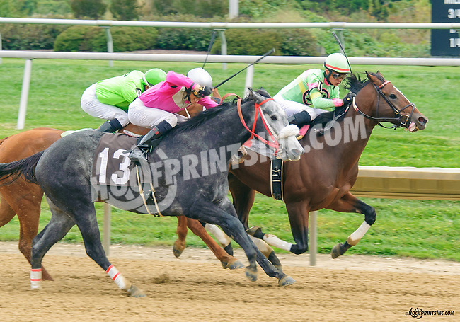 Northern Merit winning at Delaware Park on 10/17/15