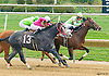 Northern Merit winning at Delaware Park on 10/17/15