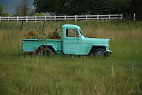 Photo of Truck used as Planter