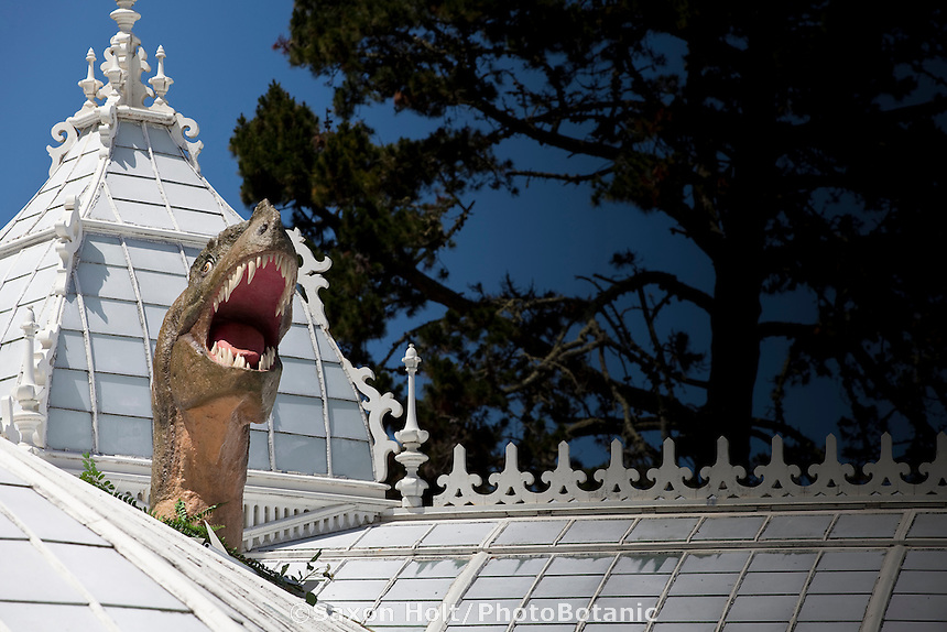 Dinosaur head coming through roof of Plantosaurus exhibit at San Francisco Conservatory of Flowers, darken on right side