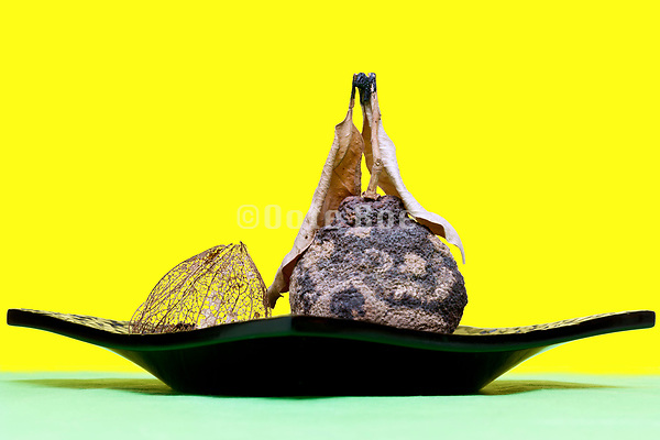 dried fruit and Chinese lantern plant on a black lacquered plate