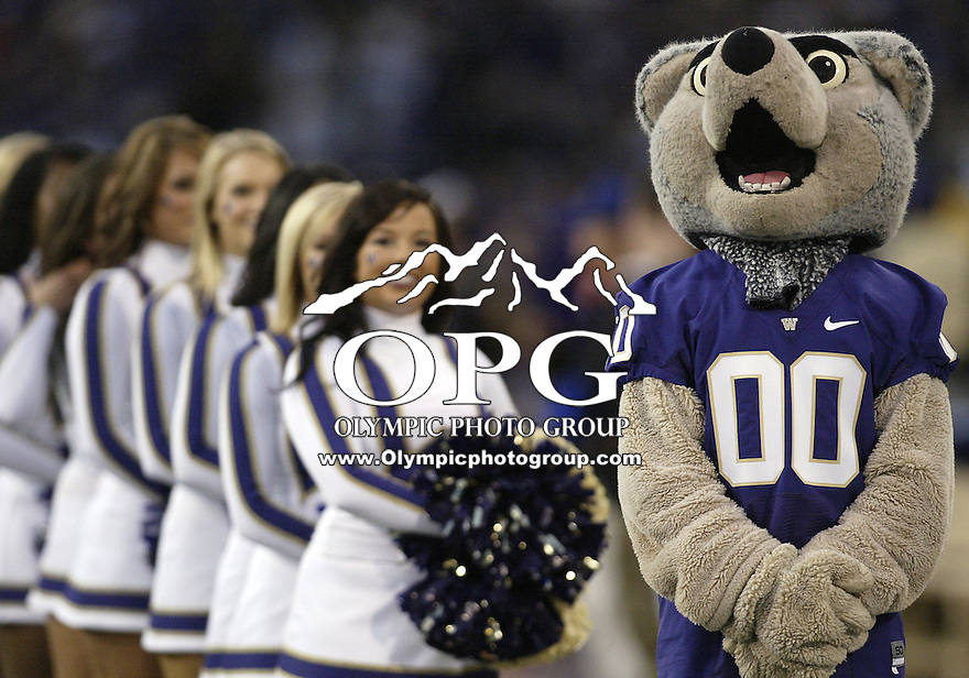 Sep 05, 2009:  Harry the Washington mascot was on hand to support the Huskies against LSU.  LSU defeated the University of Washington 31-23 at Husky Stadium in Seattle, Washington..