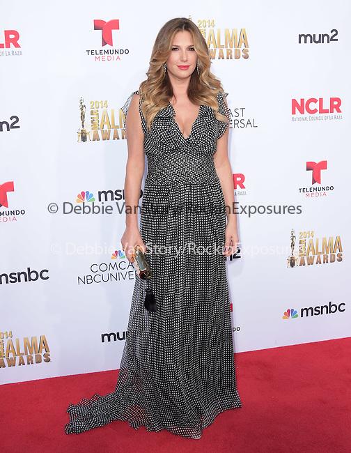 Daisy Fuentes attends The 2014 NCLR Alma Awards held at The Pasadena Civic Center in Pasadena, California on October 10,2014                                                                               © 2014 Hollywood Press Agency