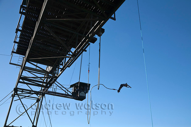 Woman bungy jumping from bungy tower.  Smithfield, Cairns, Queensland, Australia