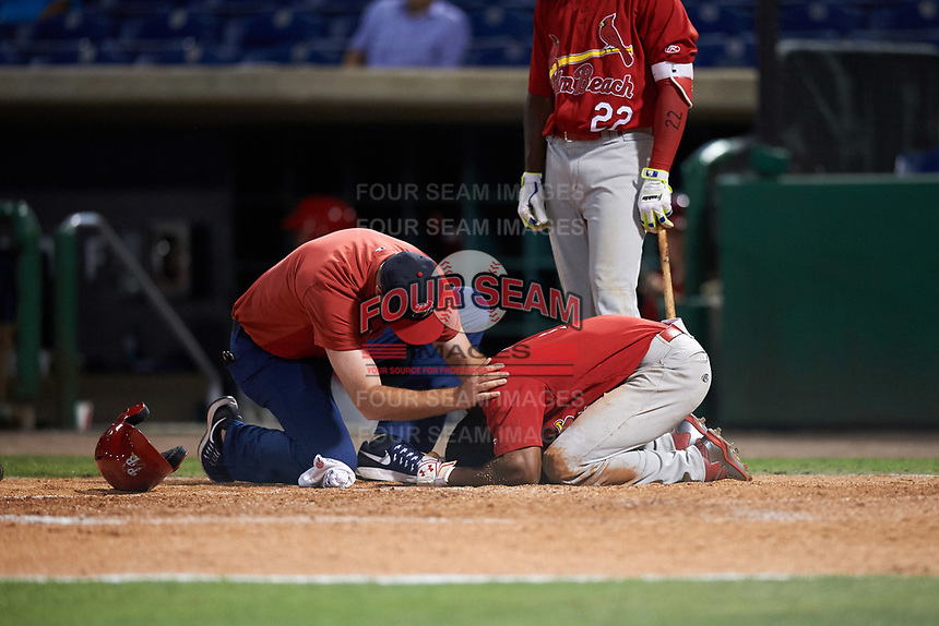 Palm Beach Cardinals trainer Brent Neuharth checks on  Magneuris Sierra (7) after getting hit in the head with a pitch during the second game of a doubleheader against the Clearwater Threshers on April 13, 2017 at Spectrum Field in Clearwater, Florida;  Randy Arozarena (22) looks on.  Palm Beach defeated Clearwater 1-0.  (Mike Janes/Four Seam Images)