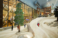 United Arab Emirates, Dubai, Ski Dubai, indoor toboggan run