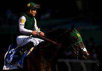 ARCADIA, CA - APRIL 07:  Bolt d'Oro #3 with Javier Castellano during the Santa Anita Derby at Santa Anita Park on April 07, 2018 in Arcadia, California.(Photo by Alex Evers/Eclipse Sportswire/Getty Images)
