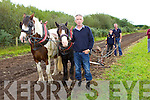 Mike Moriarty with his two Cob horses pulling the plough with Phil and Philip Moriarty at the Treshing for Cancer in Beaufort on Sunday