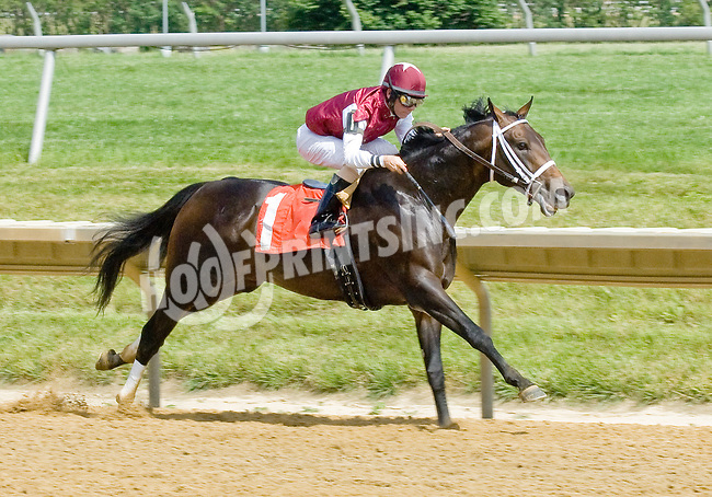 Double Bass winning at Delaware Park on 6/9/12