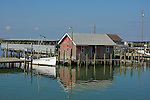 As we approached the main dock on Tangier Island,the dock side crab-huts seem to be floating on the water.