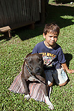 FRENCH POLYNESIA, Moorea. Dushan and his dog at home.