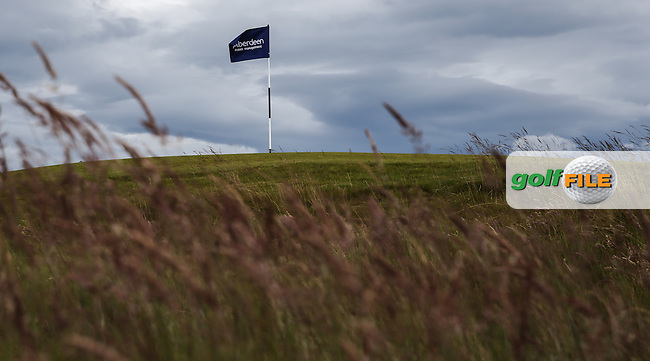 Pin-flag through long grass during Round One of the 2016 Aberdeen Asset Management Scottish Open, played at Castle Stuart Golf Club, Inverness, Scotland. 07/07/2016. Picture: David Lloyd | Golffile.<br /> <br /> All photos usage must carry mandatory copyright credit (&copy; Golffile | David Lloyd)