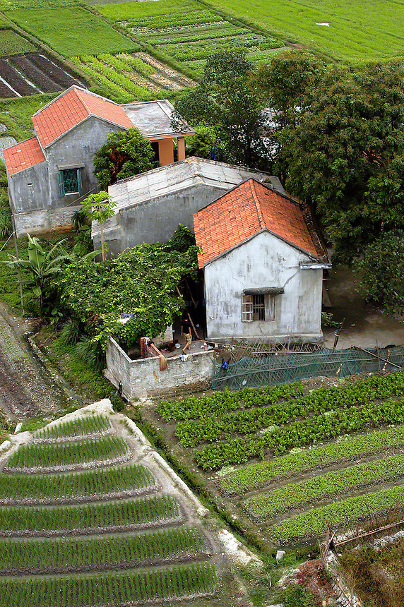 Farm in North Vietnam