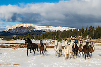 Cowboys working and playing. Cowboy Cowboy Photo Cowboy, Cowboy and Cowgirl photographs of western ranches working with horses and cattle by western cowboy photographer Jess Lee. Photographing ranches big and small in Wyoming,Montana,Idaho,Oregon,Colorado,Nevada,Arizona,Utah,New Mexico. Cowboys in winter photography