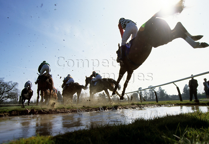 Horses take a water jump in steeplechase race