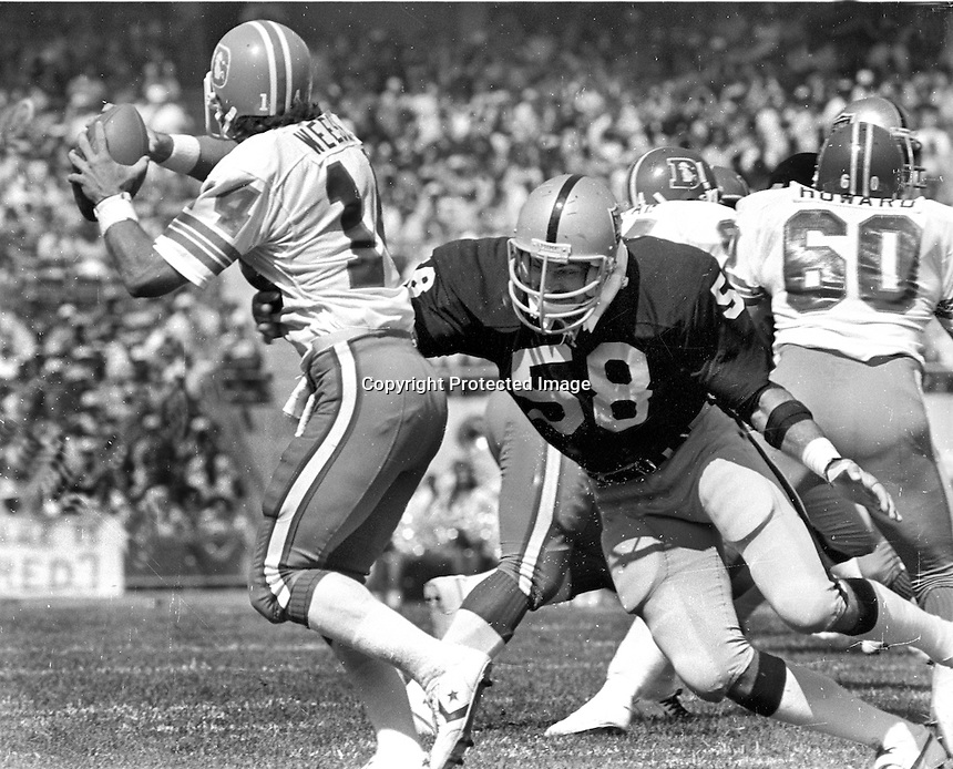 Oakland Raider linebacker Monte Johnson about to sack Denver QB Norris Weese.(1979 photo/Ron Riesterer)
