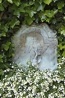 A headstone is overgrown with ivy and white Bacopa