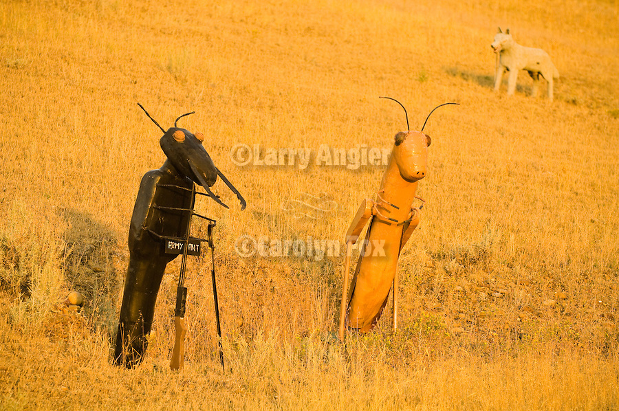 Sulptures in the field including coyote, army ant, and grasshopper--roadside sculptures by Buck Samulelson.