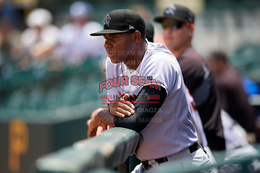 Jupiter Hammerheads pitcher Jorge Guzman (28) in the dugout during the first game of a doubleheader against the Bradenton Marauders on May 27, 2018 at LECOM Park in Bradenton, Florida.  Bradenton defeated Jupiter 13-5.  (Mike Janes/Four Seam Images)
