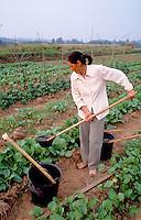 Women watering crops