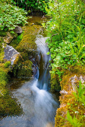 Stream below the Chinese Wall in the Bob Marshall Wilderness in Montana