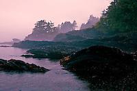 Juan de Fuca Provincial Park's west end near Port Renfew, British Columbia marks the beginning of the Juan de Fuca Marine Trail west of Victoria, the Provincial Capital.  Heavy rain, superb rain forest.