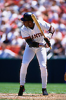SAN FRANCISCO, CA - Barry Bonds of the San Francisco Giants bats during a game in 1995 at Candlestick Park in San Francisco, California. (Photo by Brad Mangin)