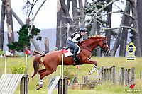 NZL-Sophie Alexander rides World Famous during the DEVI Heating Systems CCI1*J Cross Country (Interim-3RD). 2016 NZL-Puhinui International 3 Day Event. Puhinui Reserve, Auckland. Saturday 10 December. Copyright Photo: Libby Law Photography