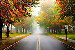 A New England residential street on a foggy autumn morning.