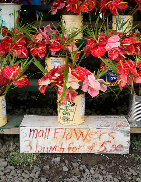 Anthuriums for sale in an open air market in Hilo, Hawaii. Photo by Kevin J. Miyazaki/Redux