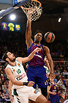 Turkish Airlines Euroleague 2018/2019. <br /> Regular Season-Round 18.<br /> FC Barcelona Lassa vs Panathinaikos Opap Athens: 79-68.<br /> Ioannis Papapetrou vs Kevin Seraphin.