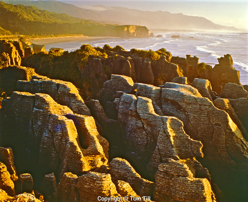 Pancake rocks of Sculpted Limestone at Sunset, Paparoa National Park, South Island, New Zealand