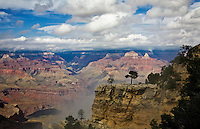 2 stunted trees stand a lonely watch above the Bright Angel Trail, on the South Rim of the Grand Canyon.