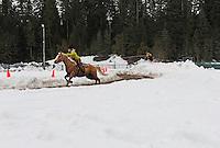Skijoring. Nelson, BC