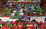 PARIS - FRANCE - 15 APRIL 2004--The vegetable department at the fine food shop Hediard at Place de la Madeleine.-- PHOTO: ERIK LUNTANG / EUP-IMAGES