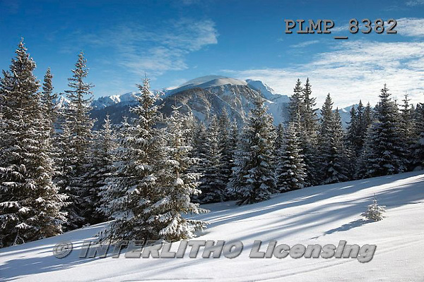 Marek, CHRISTMAS LANDSCAPES, WEIHNACHTEN WINTERLANDSCHAFTEN, NAVIDAD PAISAJES DE INVIERNO, photos+++++,PLMP8382,#xl#