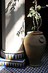 A pot in a tiled patio in Marrakesh, Morocco.