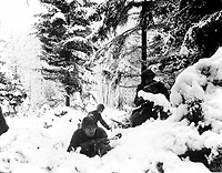 American infantrymen of the 290th Regiment fight in fresh snowfall near Amonines, Belgium.  January 4, 1945.  Braun.  (Army)<br /> NARA FILE #:  111-SC-198534<br /> WAR &amp; CONFLICT BOOK #:  1077