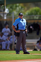 Home plate umpire Bryan Wild during a game between the FIU Panthers and the South Dakota State Jackrabbits on February 23, 2019 at North Charlotte Regional Park in Port Charlotte, Florida.  South Dakota defeated FIU 4-3.  (Mike Janes/Four Seam Images)