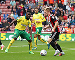 Mark Duffy of Sheffield Utd in action with Alexander Tettey of Norwich City during the Championship match at Bramall Lane Stadium, Sheffield. Picture date 16th September 2017. Picture credit should read: Jamie Tyerman/Sportimage