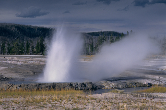 Cliff Geyser, Black Sands Basin, Yellowstone National Park, WYOMING