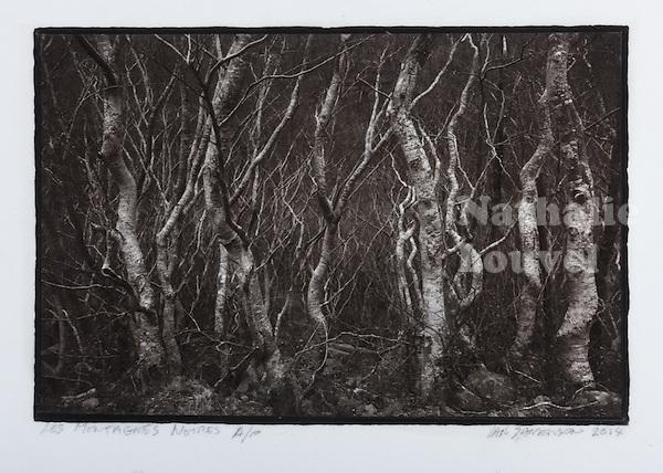 This is a Platinum Palladium print on Velum over silver leaf. <br /> Image size  23 x 16 cm
