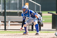 Team Italy catcher Mario Trinci (6) during an exhibition game against the Oakland Athletics at Lew Wolff Training Complex on October 3, 2018 in Mesa, Arizona. (Zachary Lucy/Four Seam Images)