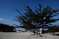 CARMEL - APR 29: Carmel Beach in Carmel, California on April 29, 2011.