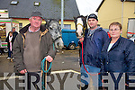 John, Sean and Nancy Brosnan from Killarney at the Fair in Athea on Saturday.   Copyright Kerry's Eye 2008