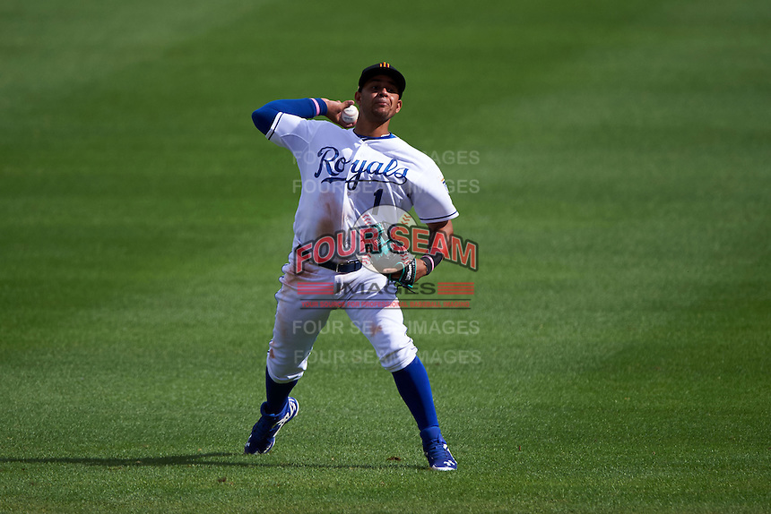 Surprise Saguaros shortstop Ramon Torres (1) throws to first during an Arizona Fall League game against the Salt River Rafters on October 20, 2015 at Salt River Fields at Talking Stick in Scottsdale, Arizona.  Surprise defeated Salt River 3-1.  (Mike Janes/Four Seam Images)