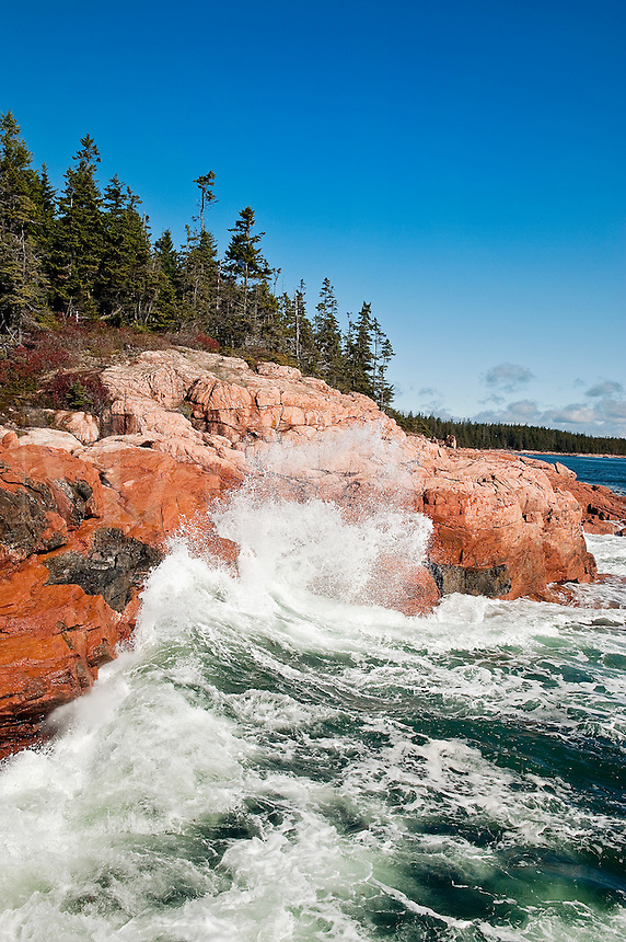 Rocky coastline, Acadia National Park, Mount Desert Island, Maine, ME, USA