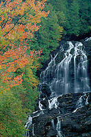 Sugar maples and Beaver Brook Falls<br /> Beaver Brook<br /> Coos County<br /> New Hampshire,  New England